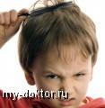 Интересно о педикулезе - MY-DOKTOR.RU
