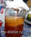 Как вырастить чайный гриб с максимально целебными свойствами - MY-DOKTOR.RU
