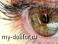 Катаракта - глаукома - MY-DOKTOR.RU