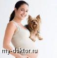 Маленький ребенок и собака в доме - MY-DOKTOR.RU