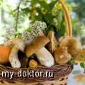 Особенности грибной диеты - MY-DOKTOR.RU
