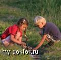 Половое развитие девочек - MY-DOKTOR.RU