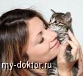 Пушистые лекари или занимательная кошкотерапия - MY-DOKTOR.RU