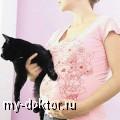 Токсоплазмоз. Как защититься при беременности? - MY-DOKTOR.RU