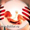В каких случаях применяются донорские яйцеклетки? - MY-DOKTOR.RU