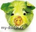Вегетарианство. За и против. Советы и мнения экспертов - MY-DOKTOR.RU