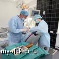 Вживление зубов - MY-DOKTOR.RU